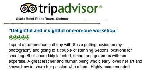 Susie Reed Photos TripAdvisor 5 star Review