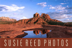 Susie Reed Photos Sedona, Arizona Logo